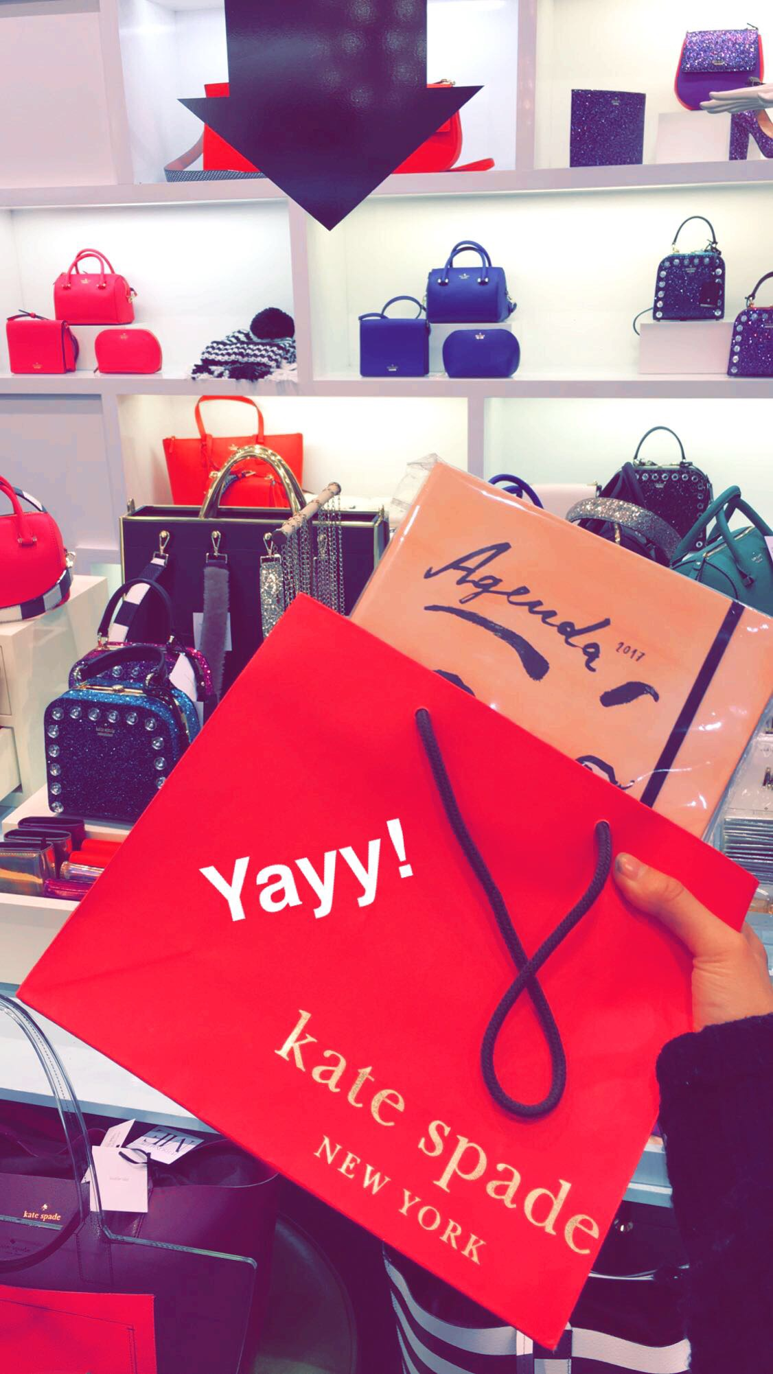 kate spade planner ally gong haul black friday snapchat ucla college lifestyle